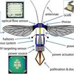 蜂型ロボット「ロボビーズ」、人工授粉、遭難者の探索などに使用か