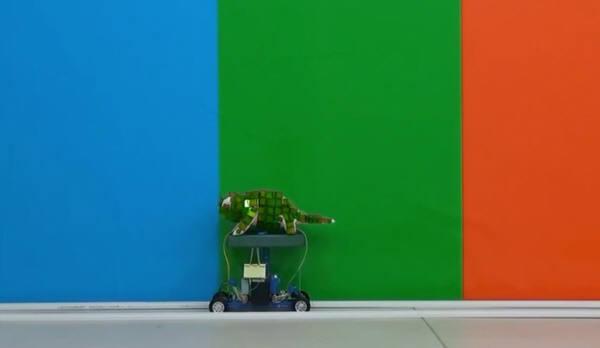 カメレオンロボット2