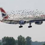 空港にドローン接近事案が増加、ドローンストライクの危険性高まる