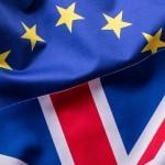 英EU離脱の決定日、米ロボアドバイザー大手が取引停止し問題に