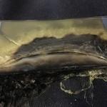 Galaxy Note7販売中止のサムスン…気になるIoT・フィンテック事業への影響