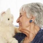 高齢者の孤独感を解決!?…続々登場「ペットロボット」への期待