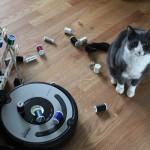 最新ロボットアームなんと「猫のザラザラした舌」を模倣か!?…米ジョージア工科大