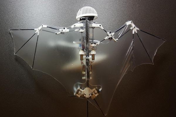 バットボット_コウモリロボット_生物模倣