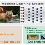 """新しい""""説明可能な人工知能""""「XAI」に注目…自動化された""""不平等""""を解決するか"""