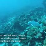 MITの「魚型水中ドローン」海の生態系に溶け込む自然派デザイン