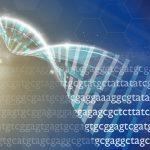 ブロックチェーンを使った遺伝子データ流通プロジェクトが続々…ゲノム情報を安全に運用可能か