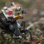 昆虫&ロボットに搭載できる超小型カメラシステム登場...ワシントン大学