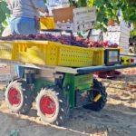 ぶどうを包装場まで運ぶ農業用ロボット「Burro」が商用化...米カリフォルニア州